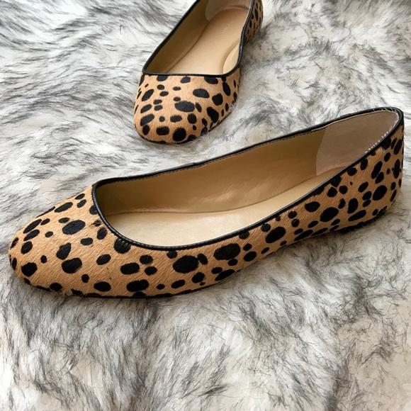 229db35fa4a Ann Taylor Shoes - ANN TAYLOR Calf Hair Leopard Print Ballet Flat